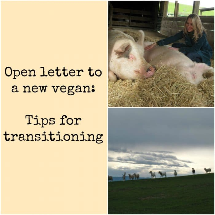"Collage with Cadry & pigs at Farm Sanctuary, goats on hill, and text, ""Open letter to a new vegan: Tips for transitioning."""
