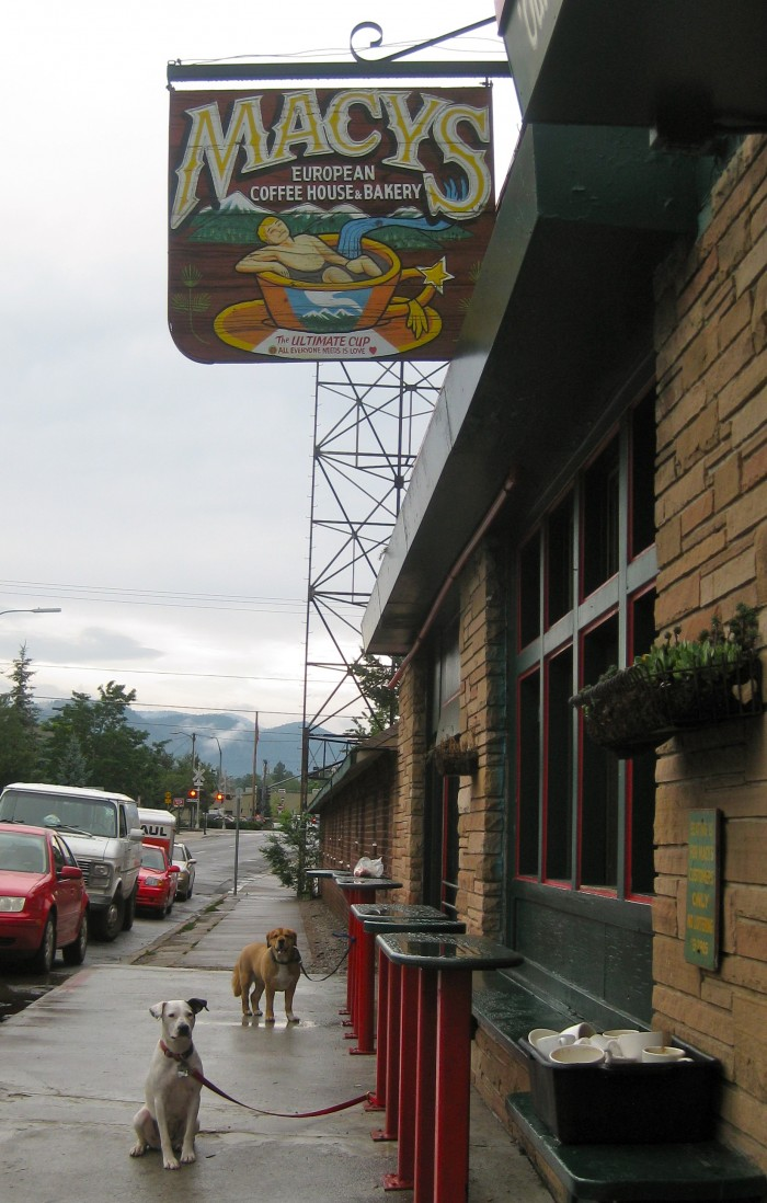 Painted wooden sign & dogs tied outside of Macy's Coffee House, a vegetarian restaurant in Arizona.