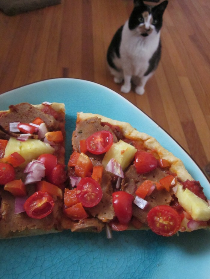 Slices of pizza on plate while Jezebel the cat looks at it, begging for a slice.