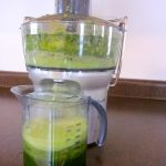 Pulp NonFiction: Thoughts On My Breville Juicer
