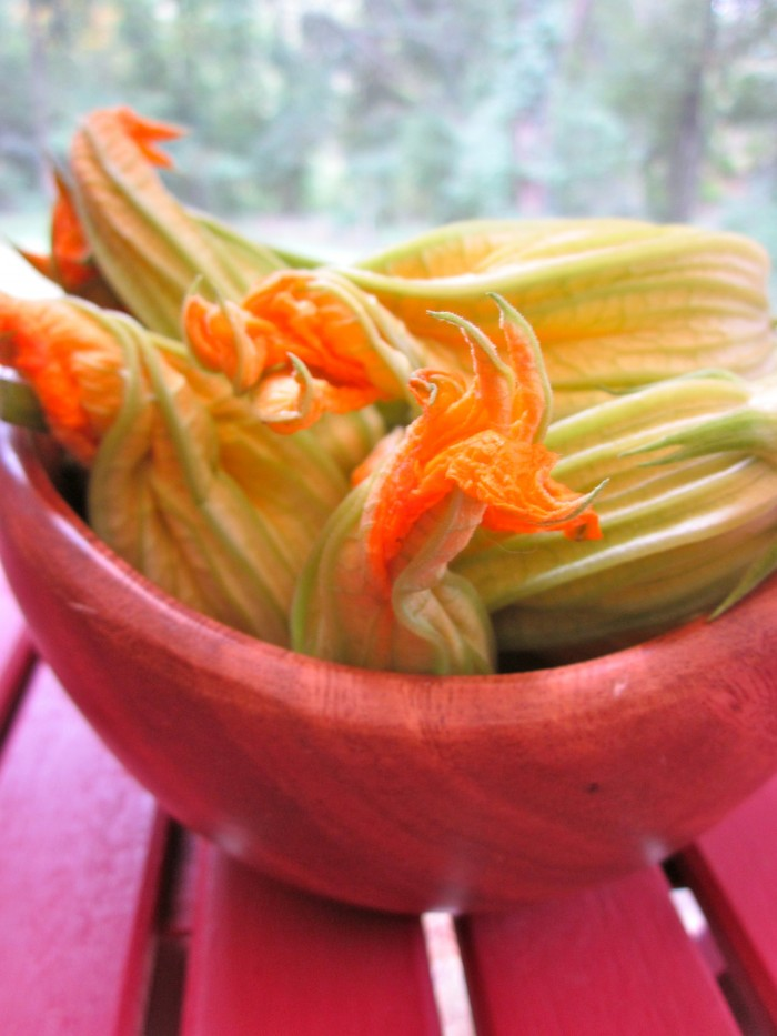 Sauteed garlicky squash blossoms