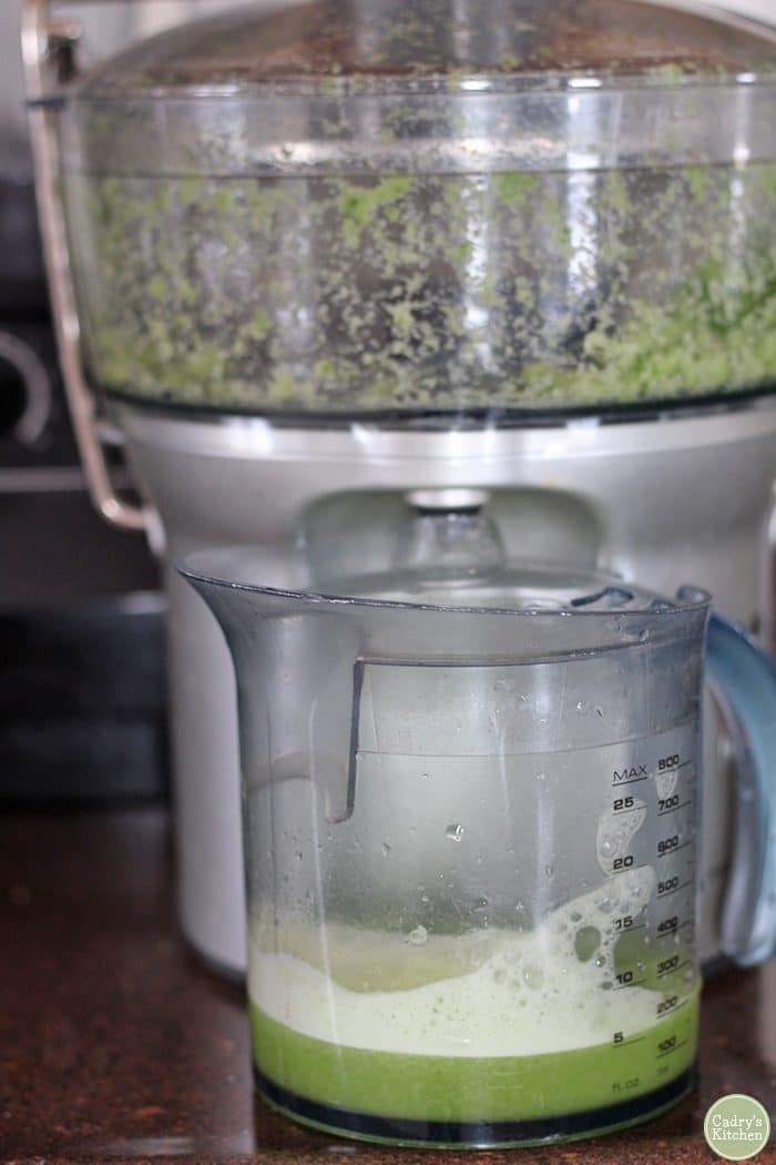 Juicer with celery and cucumber in pitcher.