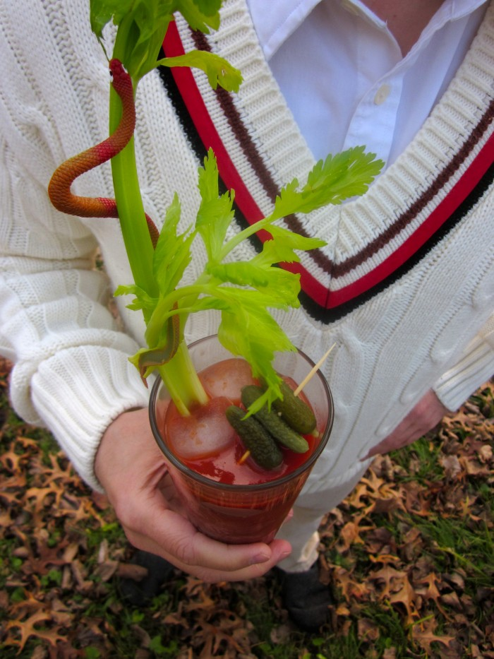David in the fifth Doctor Who's sweater, holding a Bloody Mary cocktail with plastic snake garnish on celery stick.
