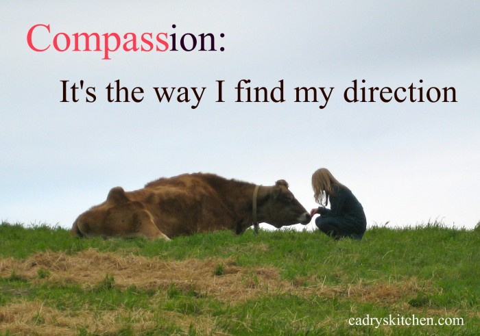 compassion-large
