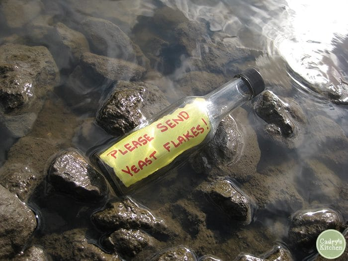 "Bottle in the rocks with a message that says, ""Please send yeast flakes."""