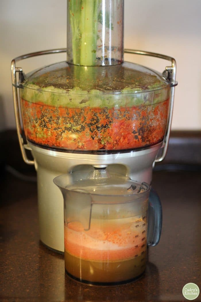 Breville fountain juicer with farmers market juice.
