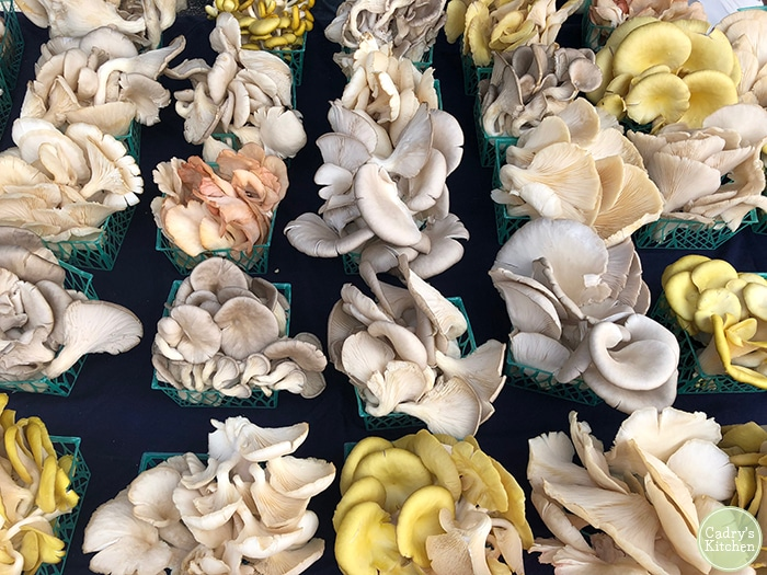 Oyster mushrooms on a table at the Freight House Farmers Market in Davenport, Iowa.