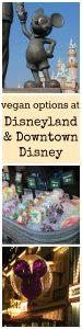 Vegan options at Disneyland & Downtown Disney | cadryskitchen.com