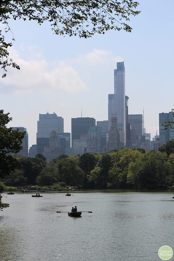 Boating on water in Central Park with New York City skyline in background.