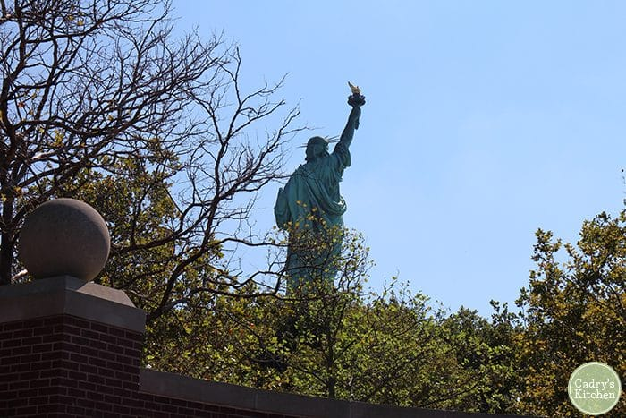 Statue of Liberty through trees and bushes.