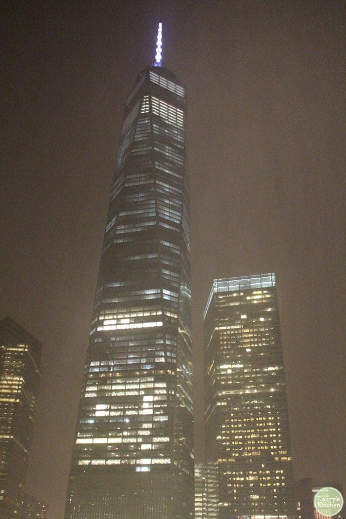 One World Trade Center in the rain in New York City.