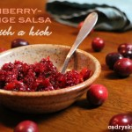 Cranberry-Orange Salsa with a Kick