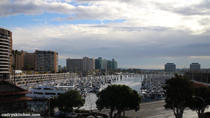 The marina at Marina del Rey.