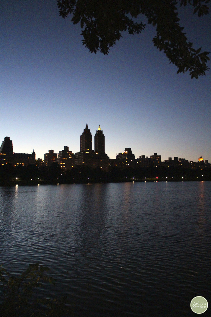 New York City skyline at night over lake in Central Park.