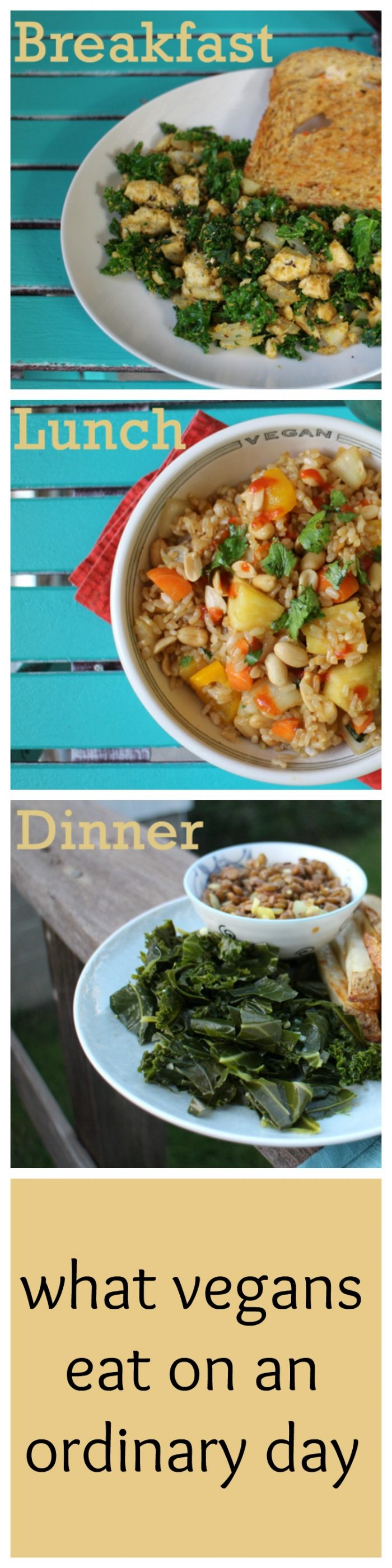 What do vegans eat? Here's breakfast, lunch, and dinner from an ordinary day.   cadryskitchen.com