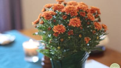 Flowers on table at vegan Thanksgiving.
