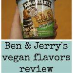 Hand holding pint of Ben & Jerry's vegan ice cream - P.B. & Cookies