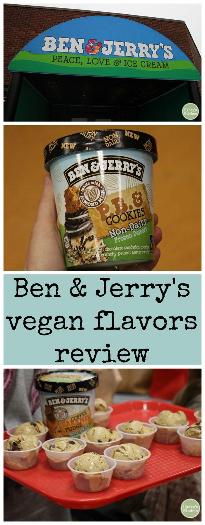 Ben and Jerry's new vegan ice cream - Review & video!   cadryskitchen.com