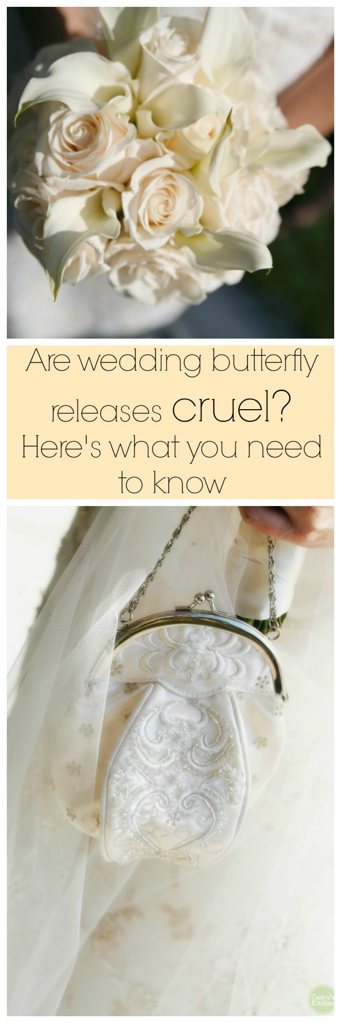 Are wedding butterfly releases cruel? Here's what you need to know before you plan your next event. | cadryskitchen.com