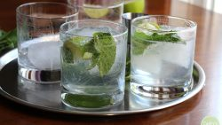 The perfect gin and tonic with lime and fresh mint | cadryskitchen.com
