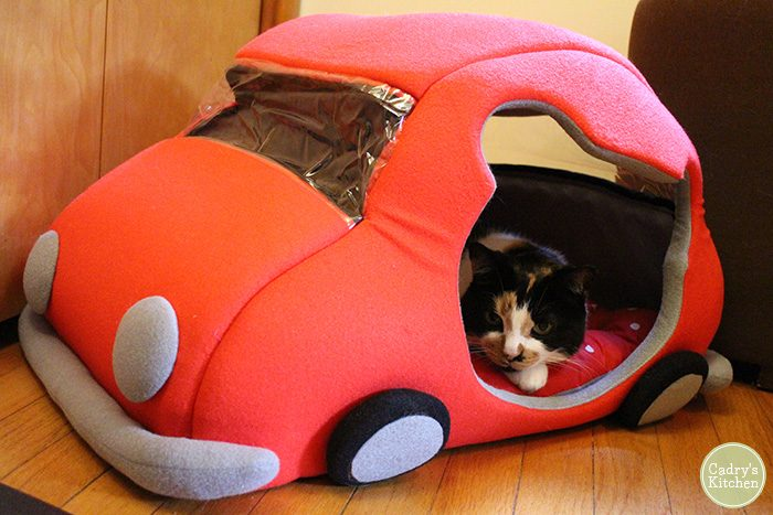 Jezebel lounging in her cat car bed.
