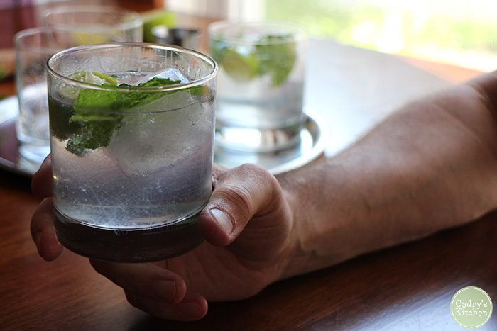 Hand holding gin and tonic with fresh mint.