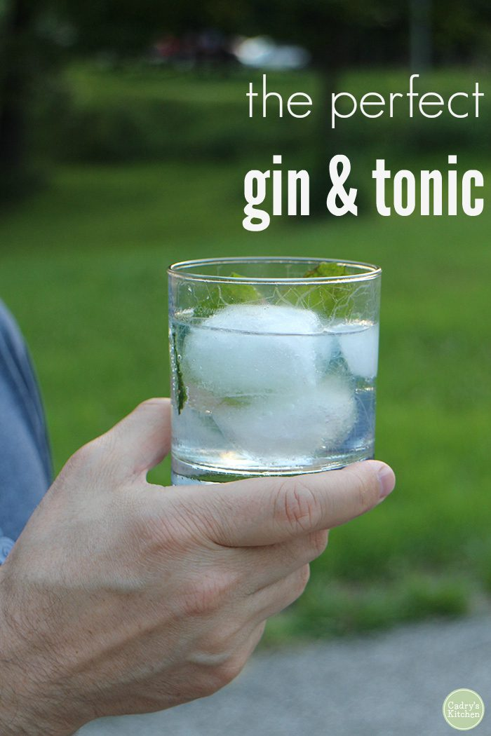 Text overlay: The perfect gin and tonic. Hand holding glass with ice & cocktail.