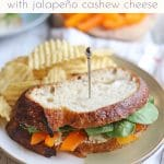 Text overlay: Vegetable sandwich with jalapeno cashew cheese. Sandwich on plate with potato chips.