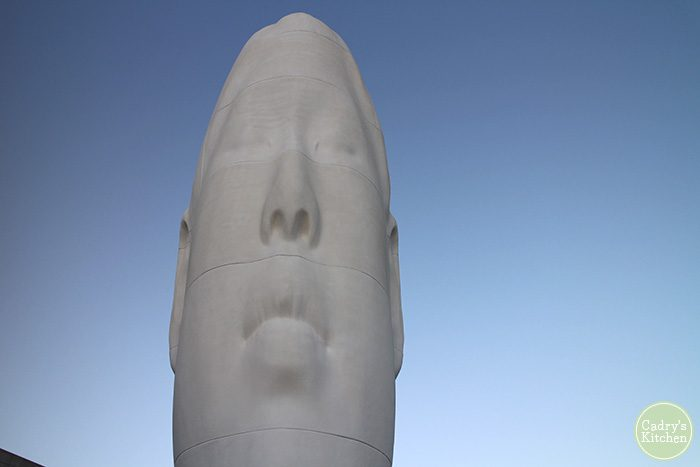 Large face sculpture at sculpture garden in Seattle.