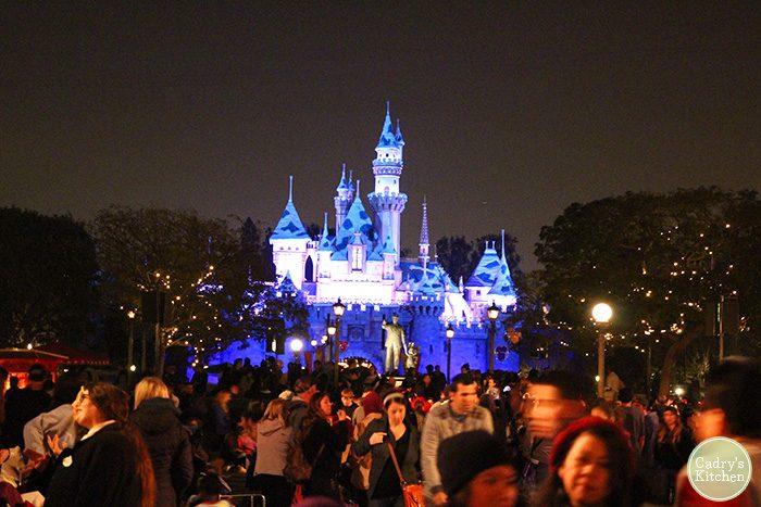 Castle lit up at night at Disneyland.