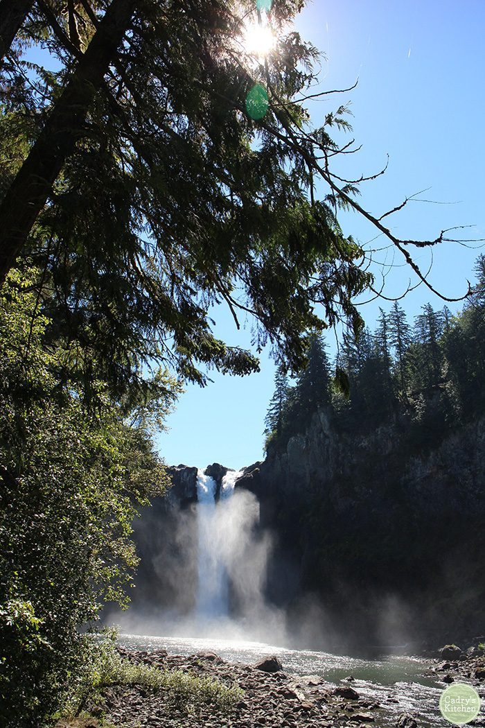 Snoqualmie Falls and trees.