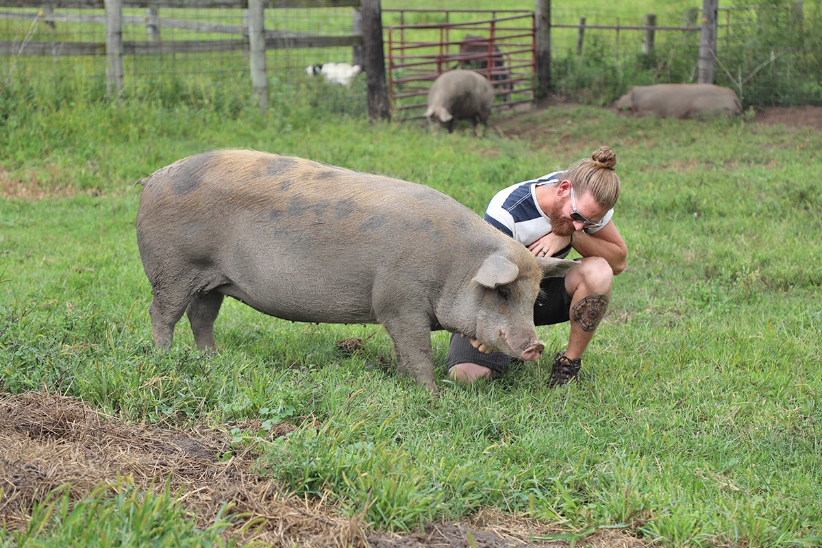 Jered Camp petting a pig.