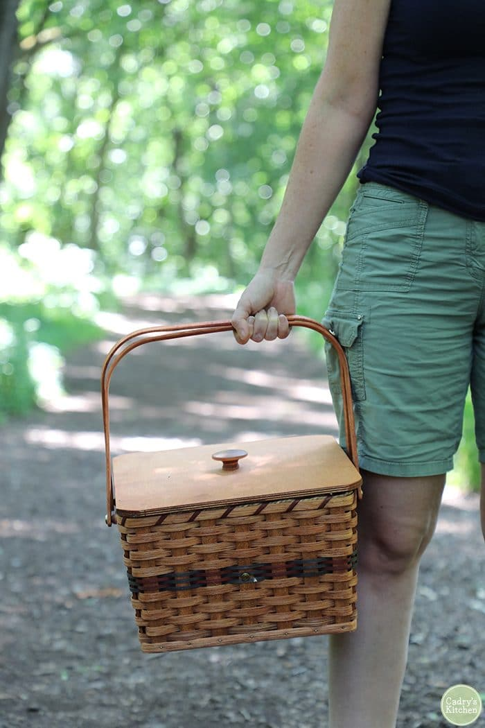 Hand holding a picnic basket on a path in woods.