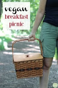 Vegan breakfast picnic text. Plus, Cadry holding picnic basket.
