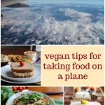 Text overlay: Vegan tips for taking food on a plane. Collage with lunch options & sky.