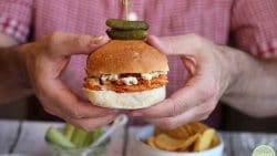 David's hands holding Buffalo Soy Curls sandwich with pickles.