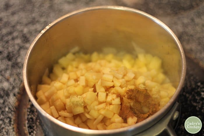 Diced apples, ginger, cinnamon, and onions in pot.