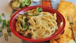 Udon noodle bowl with cashew cheese sauce & Brussels sprouts.