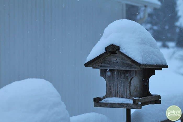 Bird feeder covered in snow during Polar Vortex.