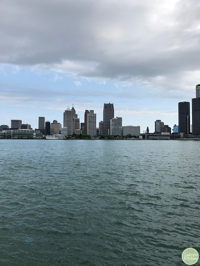 Downtown Detroit across the river from Canada.