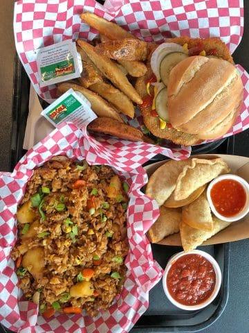 Overhead tray with vegan tenderloin, dumplings, and fried rice.