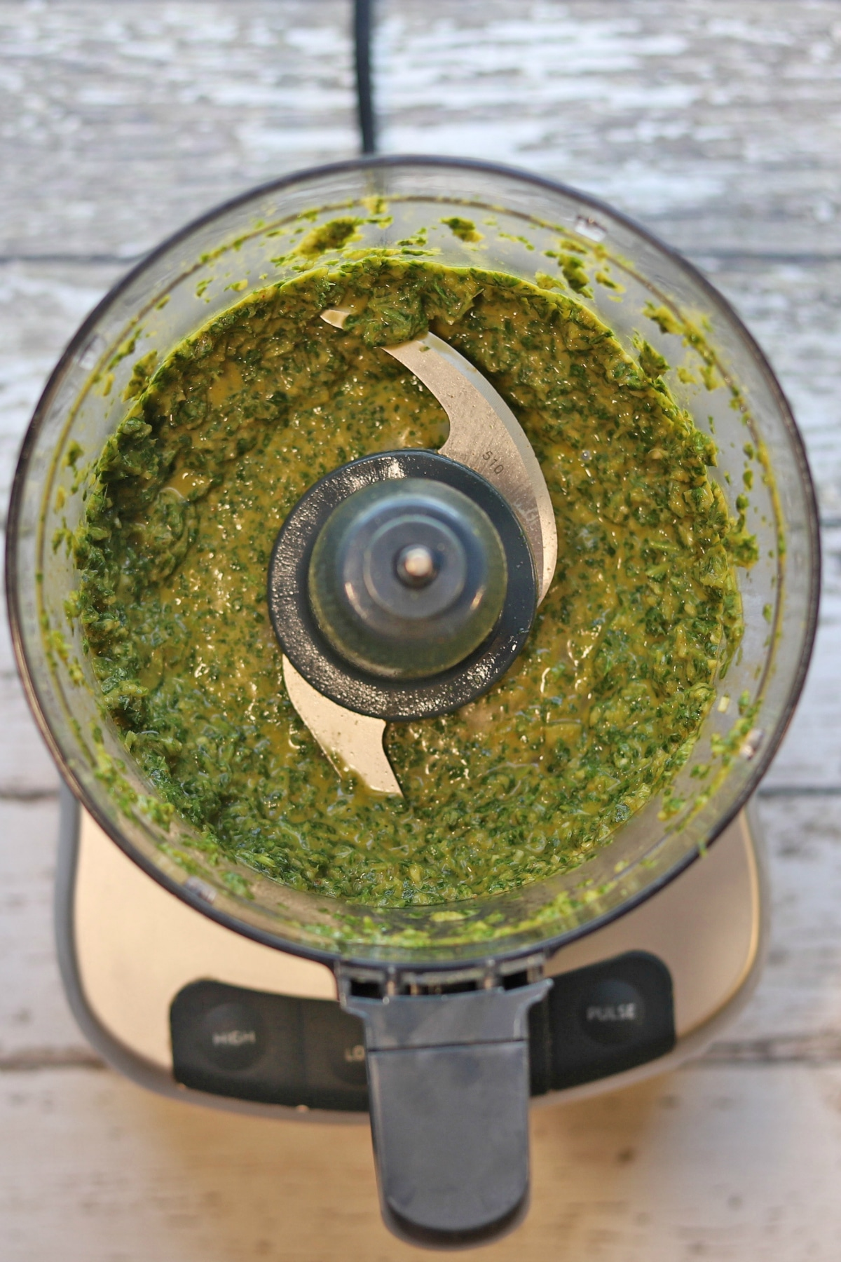 Cilantro chimichurri blended in food processor.