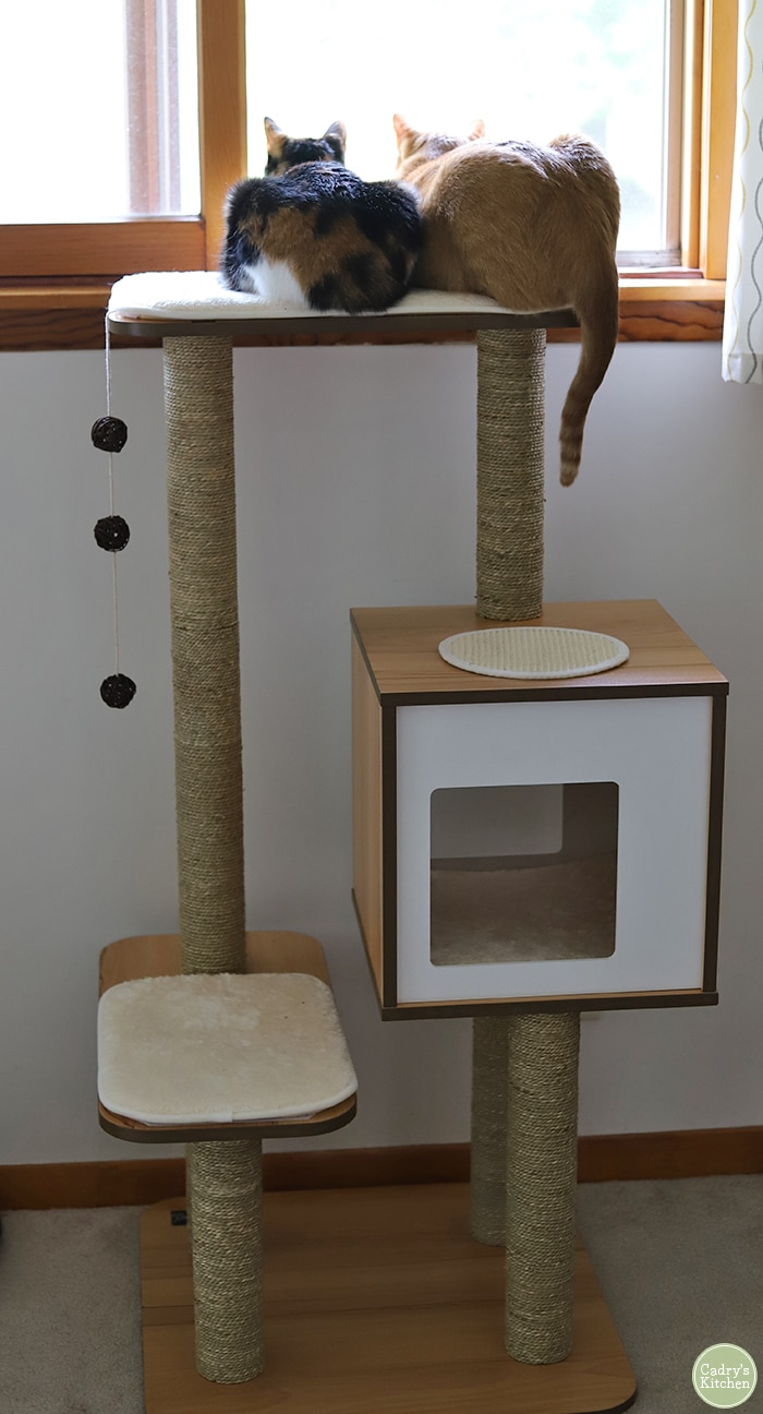 Mid-century modern cat tree with cats on top.
