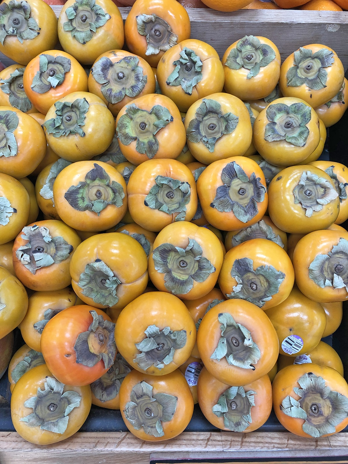 Persimmons on grocery store shelf.