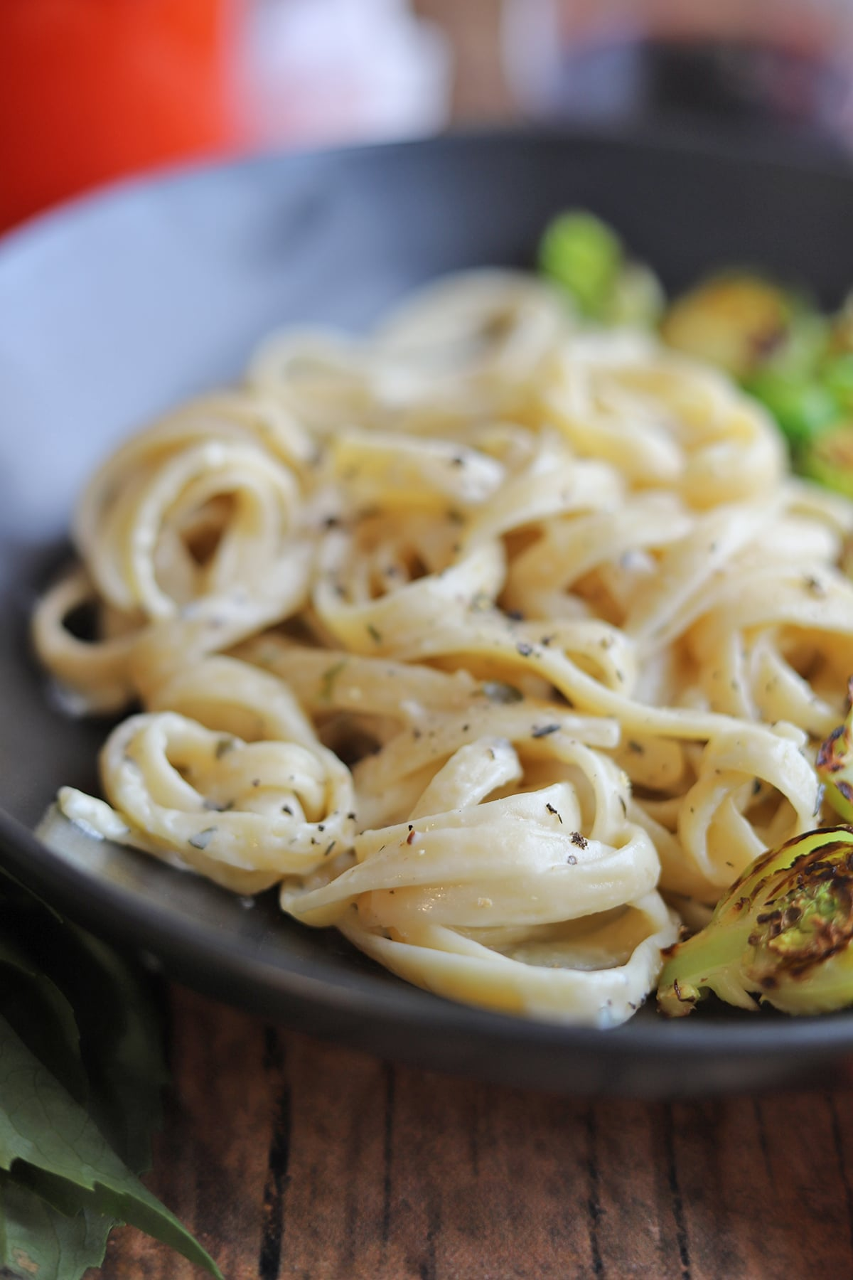 Close-up pasta with herbed alfredo sauce.