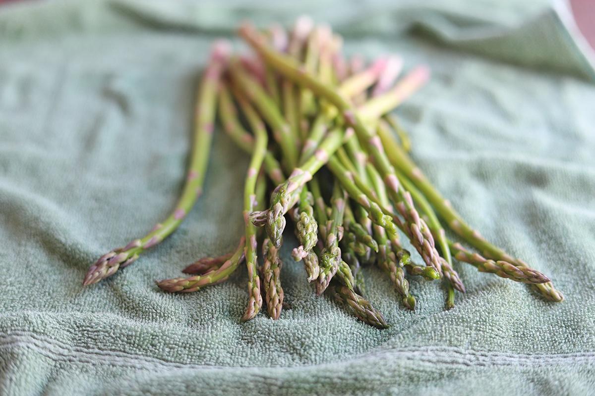 Asparagus stalks being dried on towel.